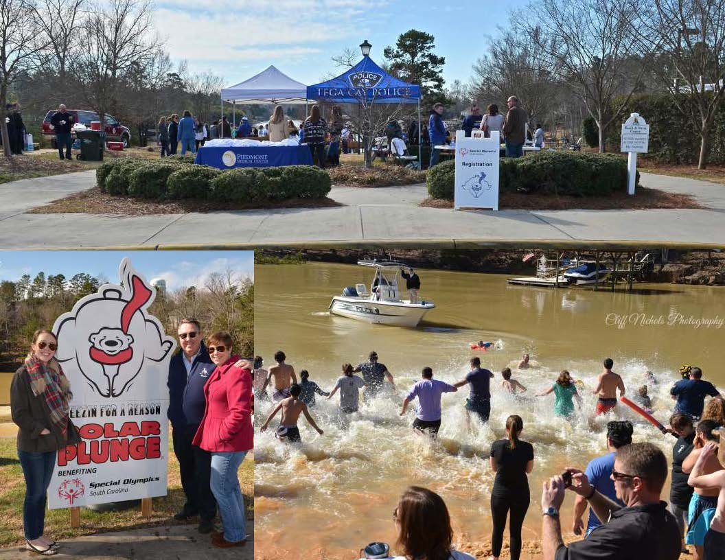 Polar Plunge 2016 Collage