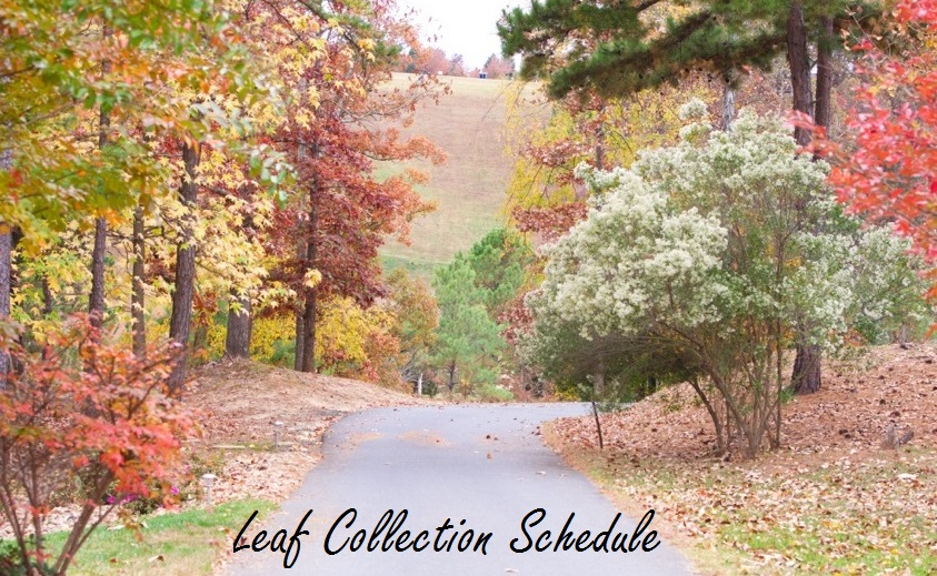 Fall Leaf Collection 2014 3